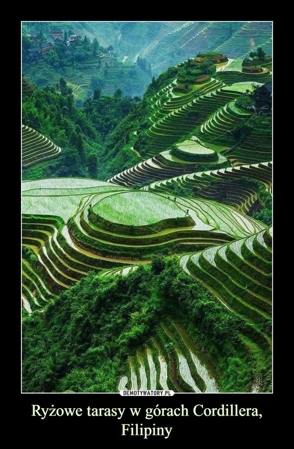 Ryżowe tarasy w górach Cordillera, Filipiny –