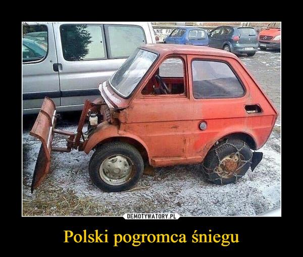 Polski pogromca śniegu –