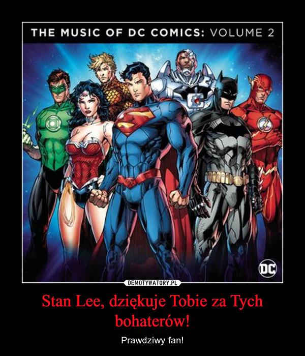 Stan Lee, dziękuje Tobie za Tych bohaterów! – Prawdziwy fan!