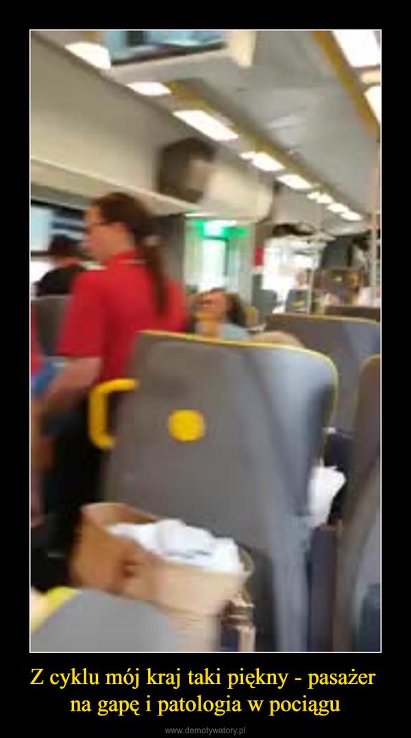 Z cyklu mój kraj taki piękny - pasażer na gapę i patologia w pociągu –