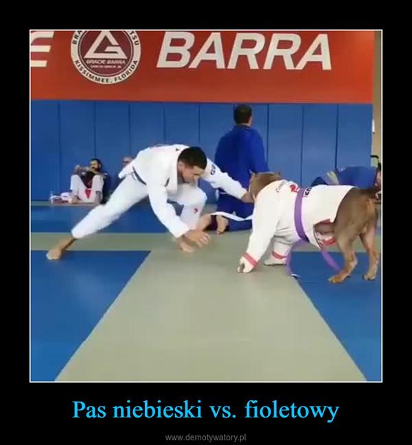 Pas niebieski vs. fioletowy –