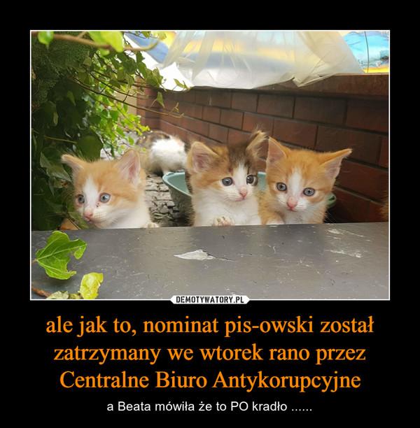 ale jak to, nominat pis-owski został zatrzymany we wtorek rano przez Centralne Biuro Antykorupcyjne – a Beata mówiła że to PO kradło ......
