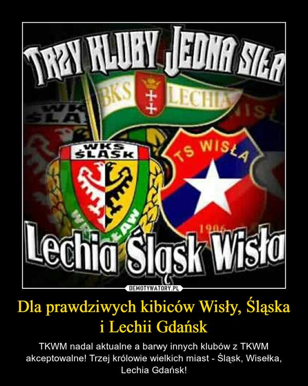 Dla prawdziwych kibiców Wisły, Śląska i Lechii Gdańsk – TKWM nadal aktualne a barwy innych klubów z TKWM akceptowalne! Trzej królowie wielkich miast - Śląsk, Wisełka, Lechia Gdańsk!