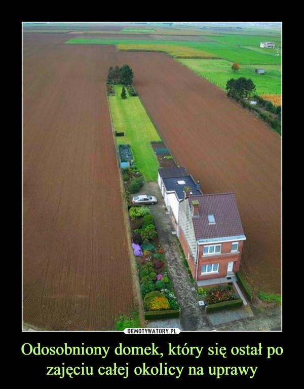 Odosobniony domek, który się ostał po zajęciu całej okolicy na uprawy –