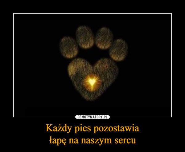 Każdy pies pozostawiałapę na naszym sercu –