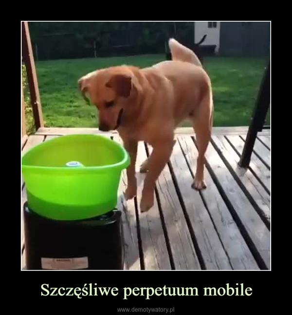 Szczęśliwe perpetuum mobile –