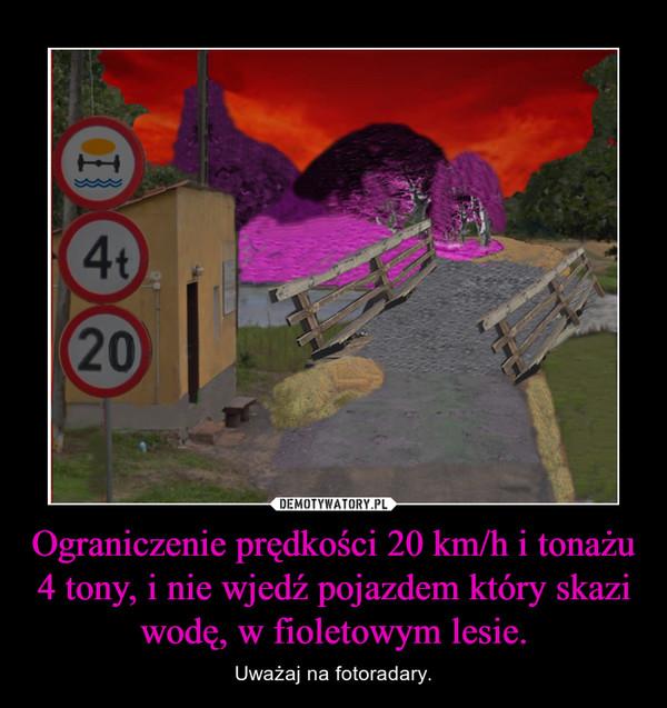 Ograniczenie prędkości 20 km/h i tonażu 4 tony, i nie wjedź pojazdem który skazi wodę, w fioletowym lesie. – Uważaj na fotoradary.