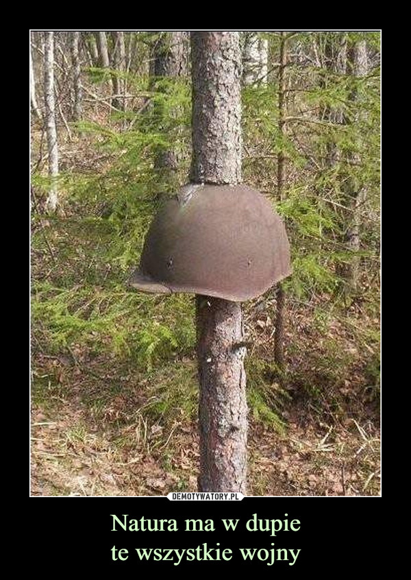 Natura ma w dupiete wszystkie wojny –