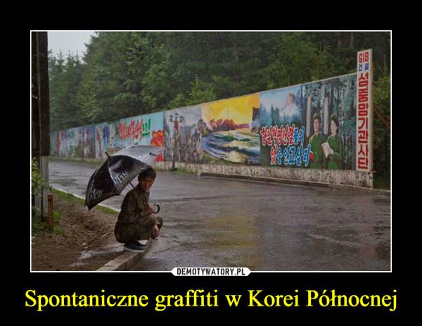Spontaniczne graffiti w Korei Północnej –