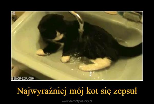 Najwyraźniej mój kot się zepsuł –