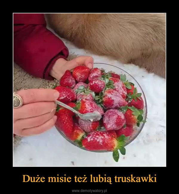 Duże misie też lubią truskawki –
