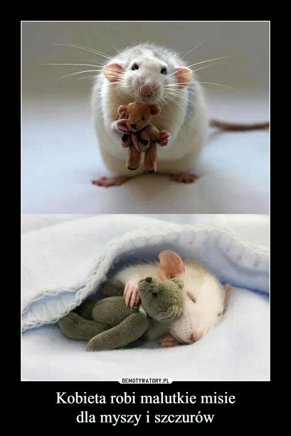 Kobieta robi malutkie misiedla myszy i szczurów –