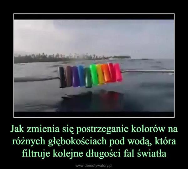 Jak zmienia się postrzeganie kolorów na różnych głębokościach pod wodą, która filtruje kolejne długości fal światła –