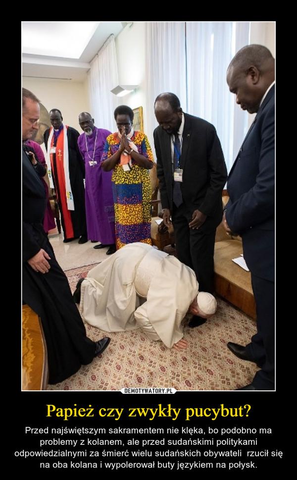 Papież czy zwykły pucybut? – Przed najświętszym sakramentem nie klęka, bo podobno ma problemy z kolanem, ale przed sudańskimi politykami odpowiedzialnymi za śmierć wielu sudańskich obywateli  rzucił się na oba kolana i wypolerował buty językiem na połysk.