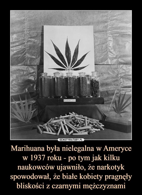Marihuana była nielegalna w Amerycew 1937 roku - po tym jak kilku naukowców ujawniło, że narkotyk spowodował, że białe kobiety pragnęły bliskości z czarnymi mężczyznami –