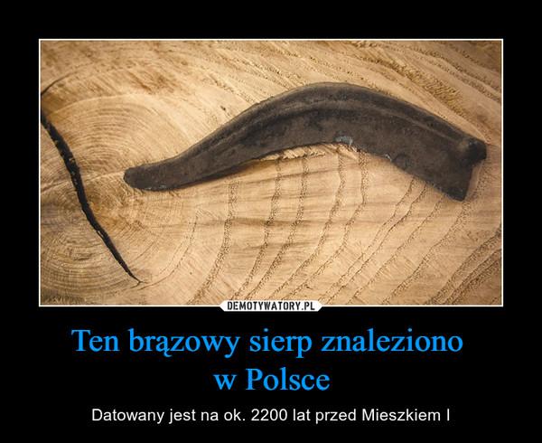 Ten brązowy sierp znaleziono w Polsce – Datowany jest na ok. 2200 lat przed Mieszkiem I