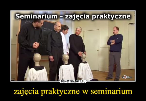 zajęcia praktyczne w seminarium –