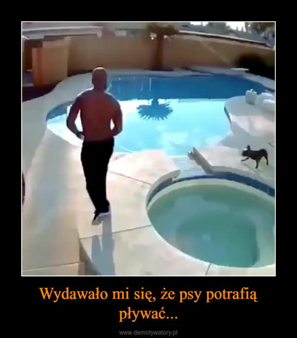Wydawało mi się, że psy potrafią pływać... –