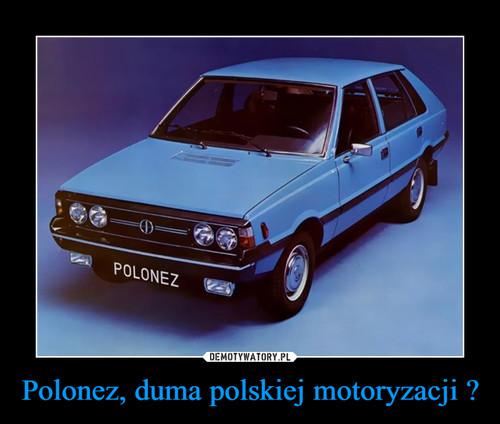 Polonez, duma polskiej motoryzacji ?