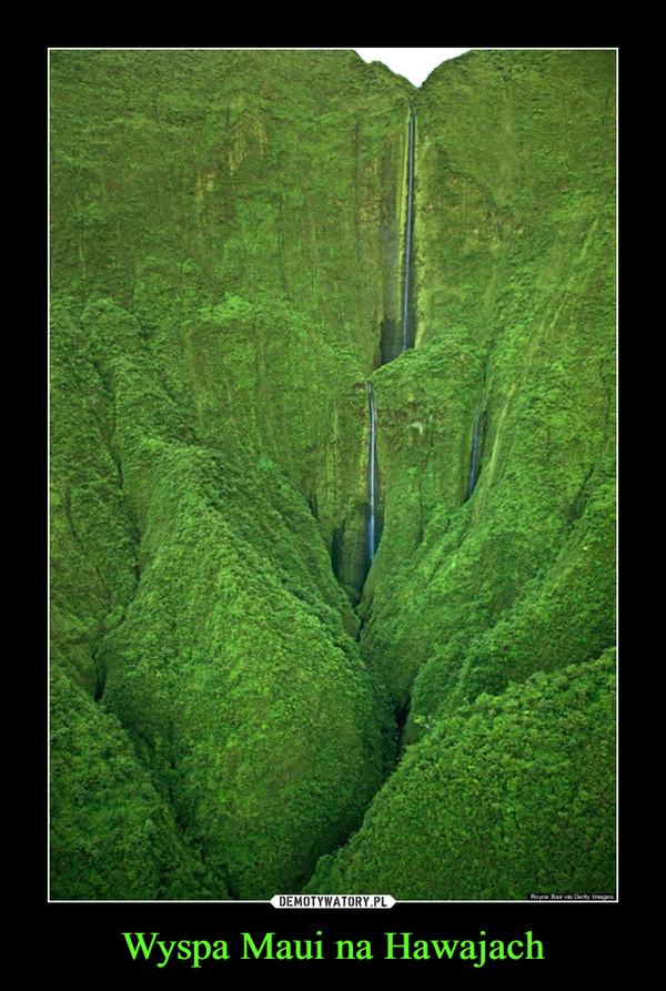 Wyspa Maui na Hawajach –