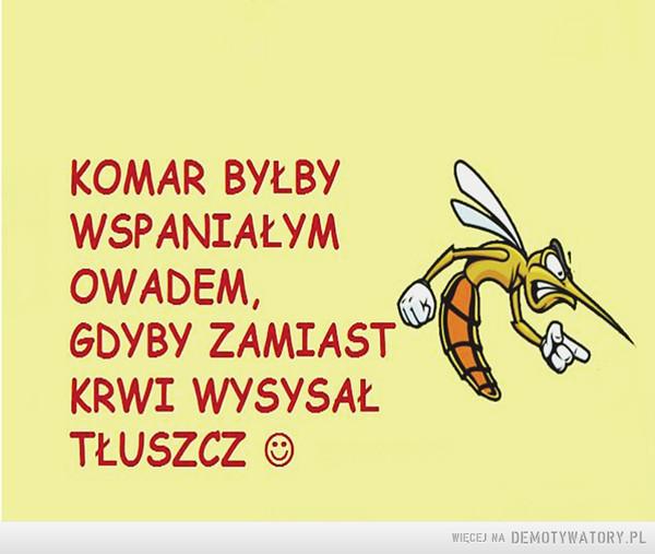 Komar –