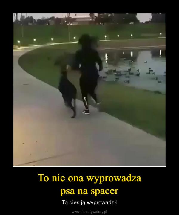 To nie ona wyprowadzapsa na spacer – To pies ją wyprowadził
