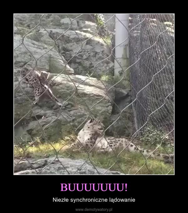BUUUUUUU! – Niezłe synchroniczne lądowanie