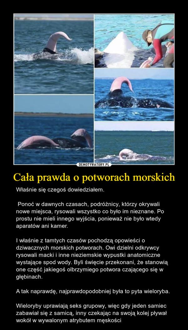 Cała prawda o potworach morskich – Właśnie się czegoś dowiedziałem. Ponoć w dawnych czasach, podróżnicy, którzy okrywali nowe miejsca, rysowali wszystko co było im nieznane. Po prostu nie mieli innego wyjścia, ponieważ nie było wtedy aparatów ani kamer. I właśnie z tamtych czasów pochodzą opowieści o dziwacznych morskich potworach. Owi dzielni odkrywcy rysowali macki i inne nieziemskie wypustki anatomiczne wystające spod wody. Byli święcie przekonani, że stanowią one część jakiegoś olbrzymiego potwora czającego się w głębinach.A tak naprawdę, najprawdopodobniej była to pyta wieloryba.Wieloryby uprawiają seks grupowy, więc gdy jeden samiec zabawiał się z samicą, inny czekając na swoją kolej pływał wokół w wywalonym atrybutem męskości