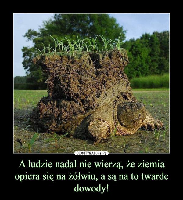 A ludzie nadal nie wierzą, że ziemia opiera się na żółwiu, a są na to twarde dowody! –