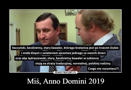 Miś, Anno Domini 2019