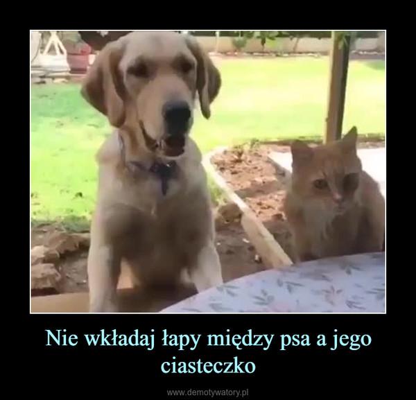 Nie wkładaj łapy między psa a jego ciasteczko –