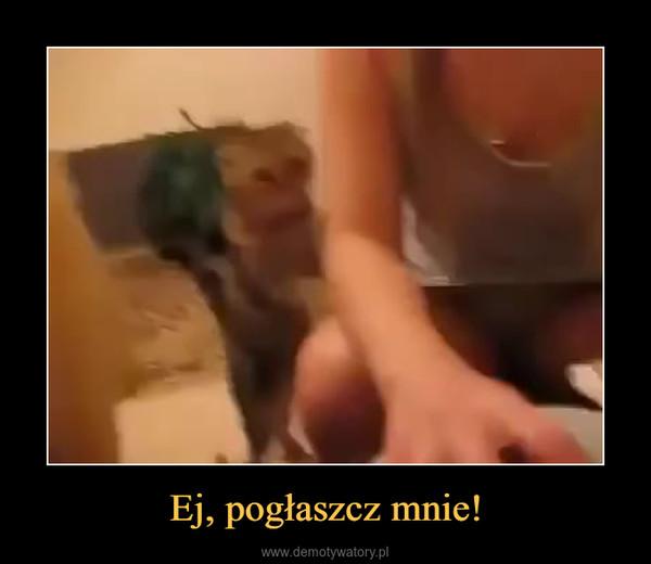 Ej, pogłaszcz mnie! –