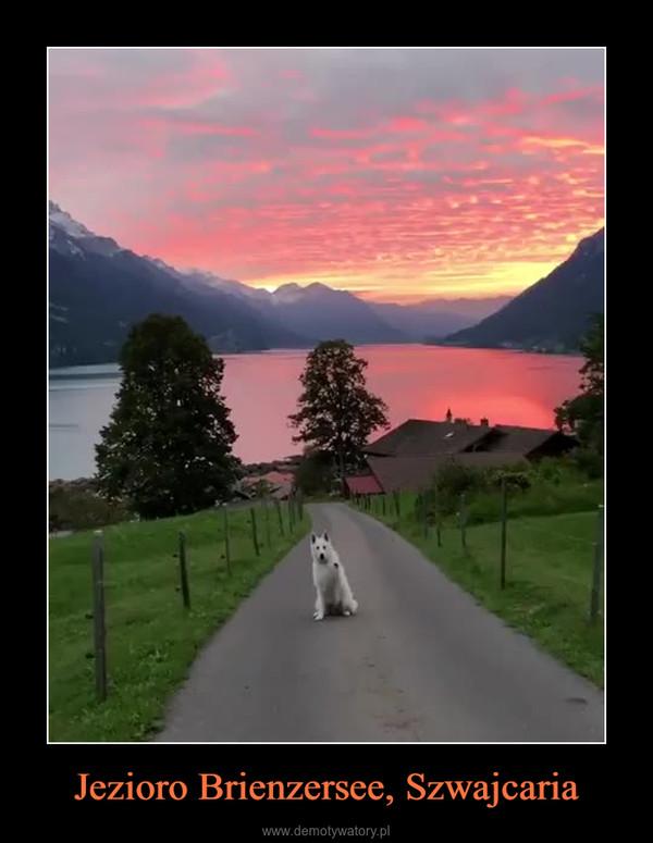 Jezioro Brienzersee, Szwajcaria –