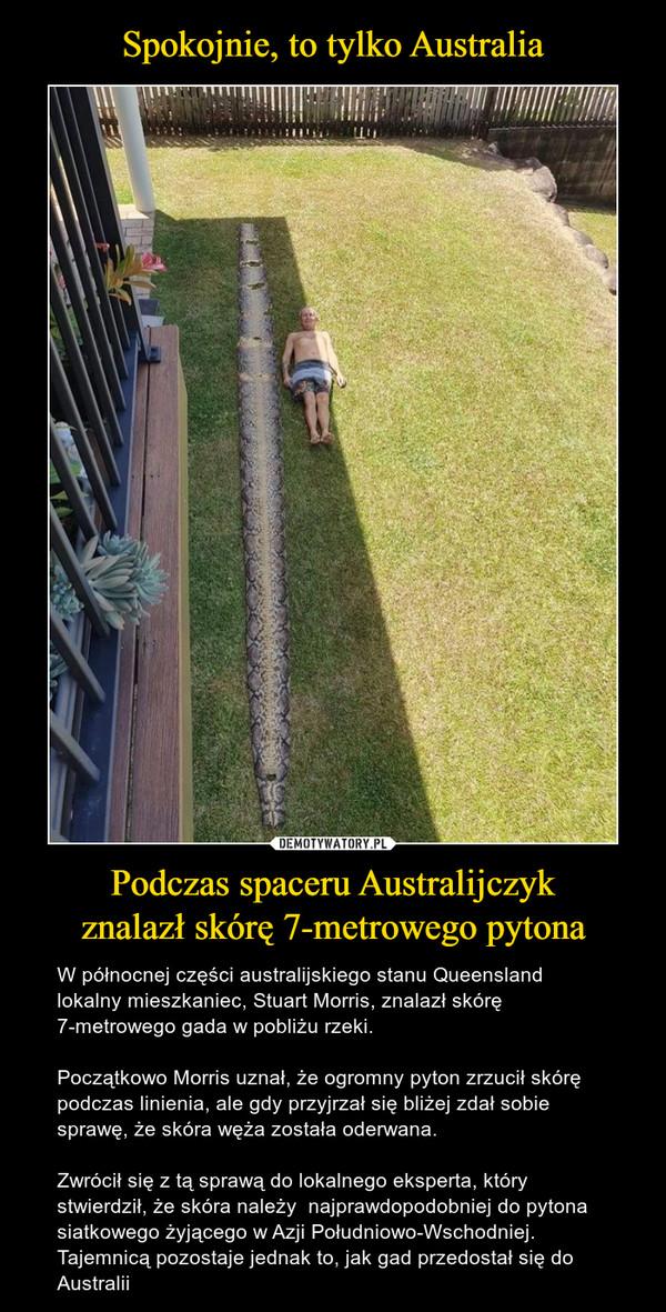 Podczas spaceru Australijczykznalazł skórę 7-metrowego pytona – W północnej części australijskiego stanu Queensland lokalny mieszkaniec, Stuart Morris, znalazł skórę 7-metrowego gada w pobliżu rzeki. Początkowo Morris uznał, że ogromny pyton zrzucił skórę podczas linienia, ale gdy przyjrzał się bliżej zdał sobie sprawę, że skóra węża została oderwana. Zwrócił się z tą sprawą do lokalnego eksperta, który stwierdził, że skóra należy  najprawdopodobniej do pytona siatkowego żyjącego w Azji Południowo-Wschodniej. Tajemnicą pozostaje jednak to, jak gad przedostał się do Australii