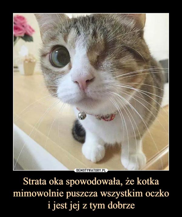 Strata oka spowodowała, że kotka mimowolnie puszcza wszystkim oczkoi jest jej z tym dobrze –