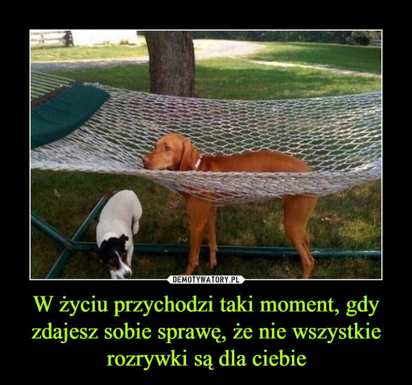 W życiu przychodzi taki moment, gdy zdajesz sobie sprawę, że nie wszystkie rozrywki są dla ciebie –
