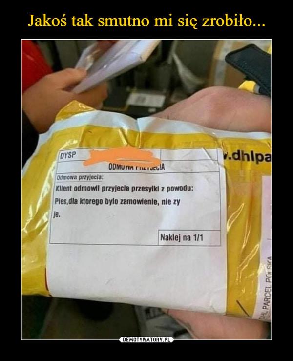 –  Odmowa przyjęcia: Klient odmówił przyjęcia przesyłki z powodu: Pies,dla którego było zamówienie, nie żyje