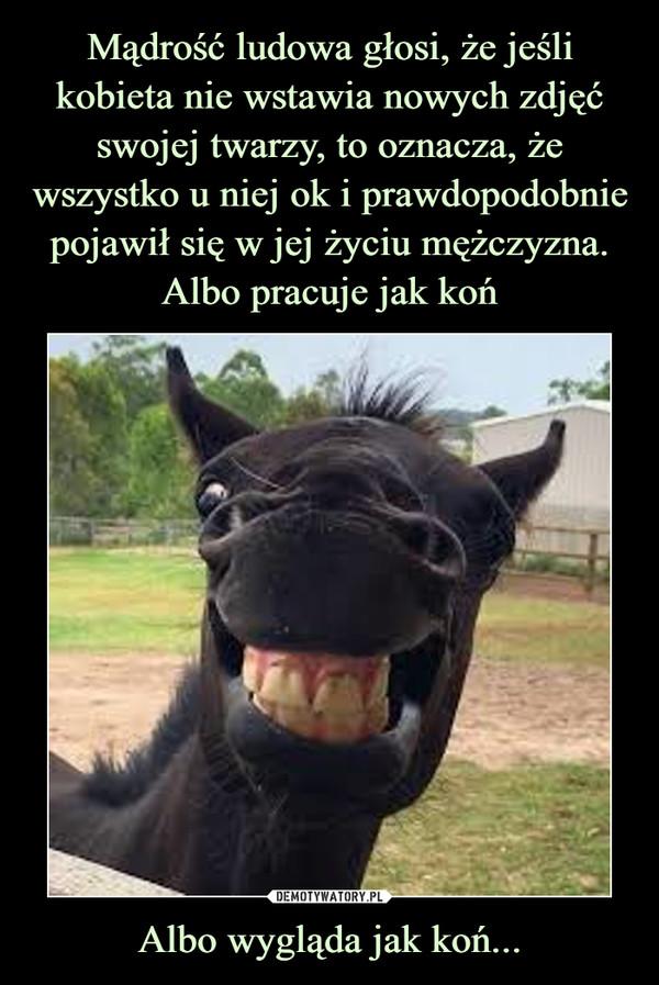 Albo wygląda jak koń... –