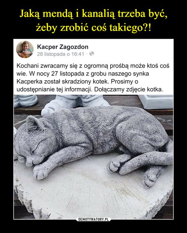 –  Kacper Zagozdon28 listopada o 16:41Kochani zwracamy się z ogromną prośbą może ktoś coświe. W nocy 27 listopada z grobu naszego synkaKacperka został skradziony kotek. Prosimy oudostępnianie tej informacji. Dołączamy zdjęcie kotka