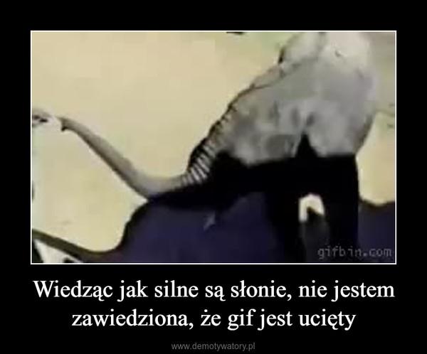 Wiedząc jak silne są słonie, nie jestem zawiedziona, że gif jest ucięty –