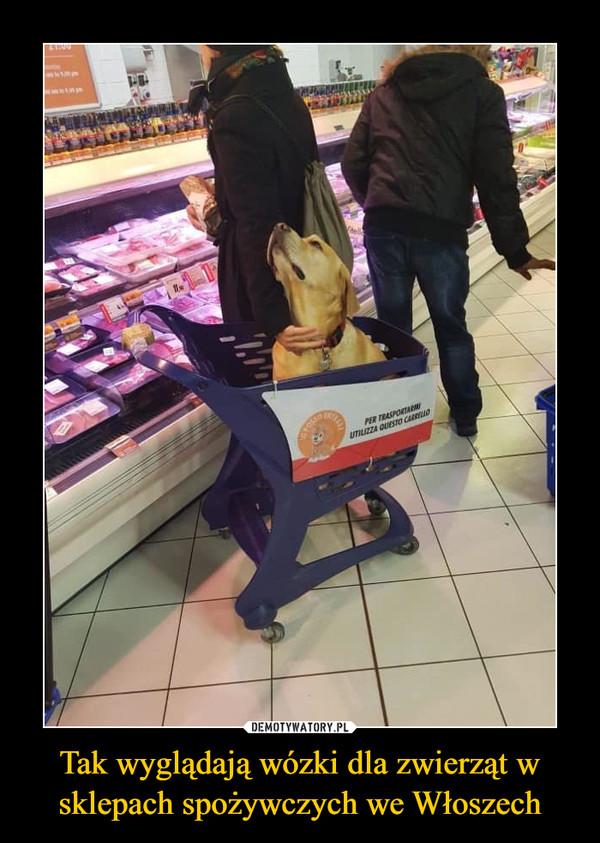 Tak wyglądają wózki dla zwierząt w sklepach spożywczych we Włoszech –