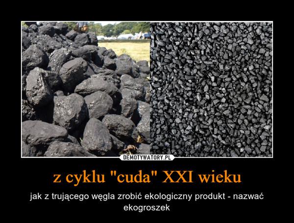 """z cyklu """"cuda"""" XXI wieku – jak z trującego węgla zrobić ekologiczny produkt - nazwać ekogroszek"""