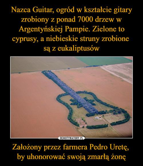 Nazca Guitar, ogród w kształcie gitary zrobiony z ponad 7000 drzew w Argentyńskiej Pampie. Zielone to cyprusy, a niebieskie struny zrobione  są z eukaliptusów Założony przez farmera Pedro Uretę,  by uhonorować swoją zmarłą żonę