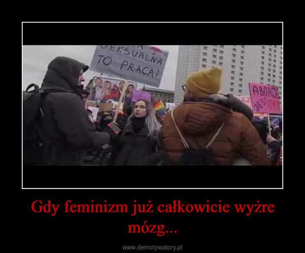 Gdy feminizm już całkowicie wyżre mózg... –
