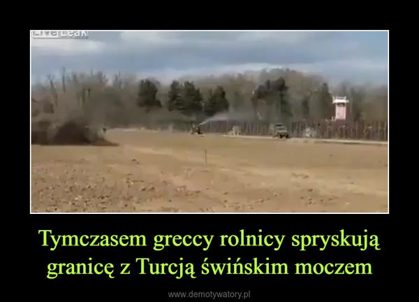 Tymczasem greccy rolnicy spryskują granicę z Turcją świńskim moczem –