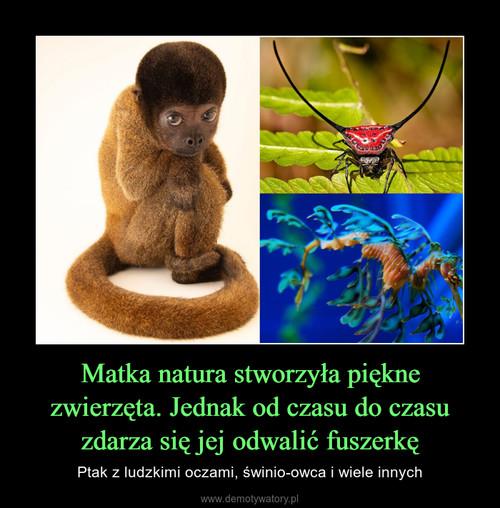 Matka natura stworzyła piękne zwierzęta. Jednak od czasu do czasu zdarza się jej odwalić fuszerkę