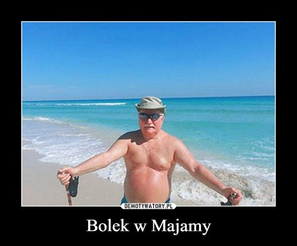 Bolek w Majamy –
