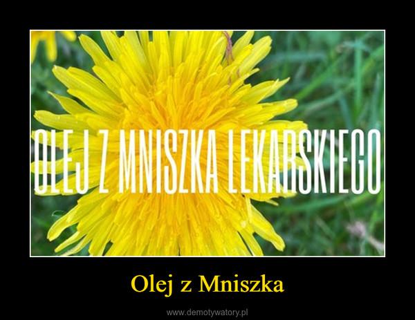 Olej z Mniszka –
