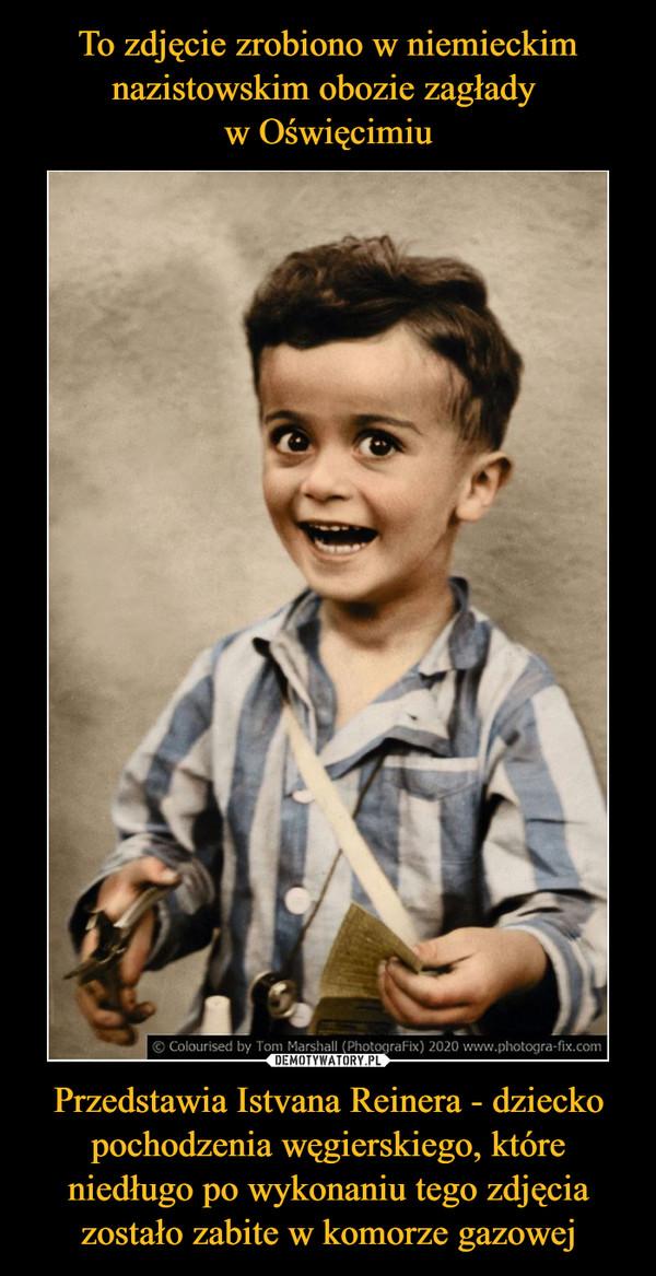 Przedstawia Istvana Reinera - dziecko pochodzenia węgierskiego, które niedługo po wykonaniu tego zdjęcia zostało zabite w komorze gazowej –