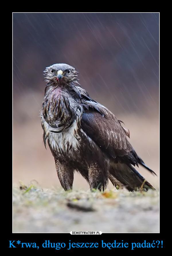 K*rwa, długo jeszcze będzie padać?! –